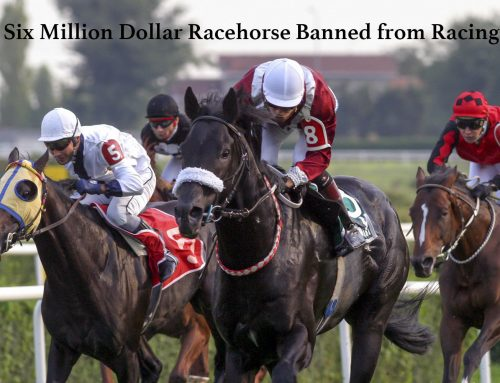 Six Million Dollar Horse Banned from Racing